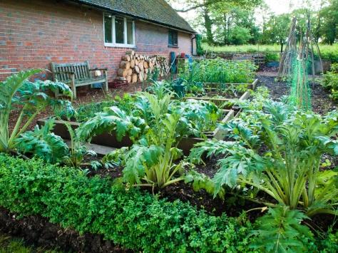 Garden-6061438