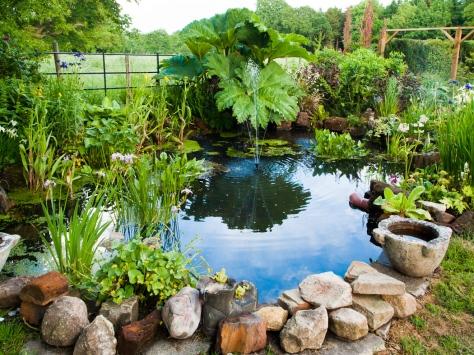 Garden-6061447