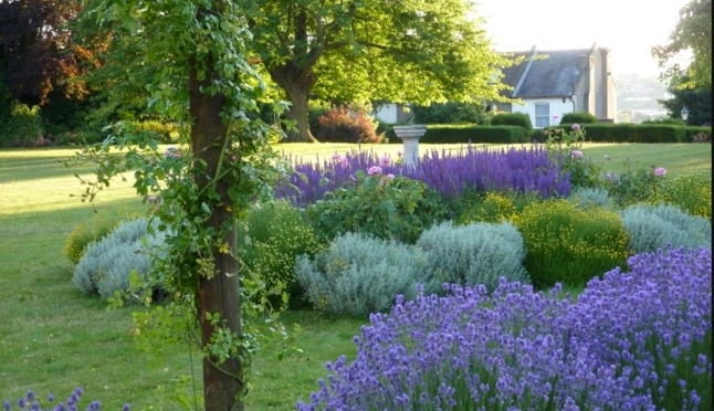 Bishopscourt Open Garden day